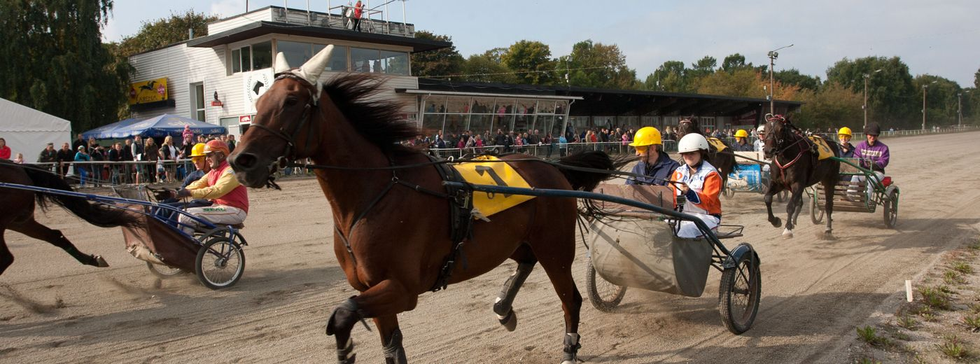 Horse Races in Tallinn