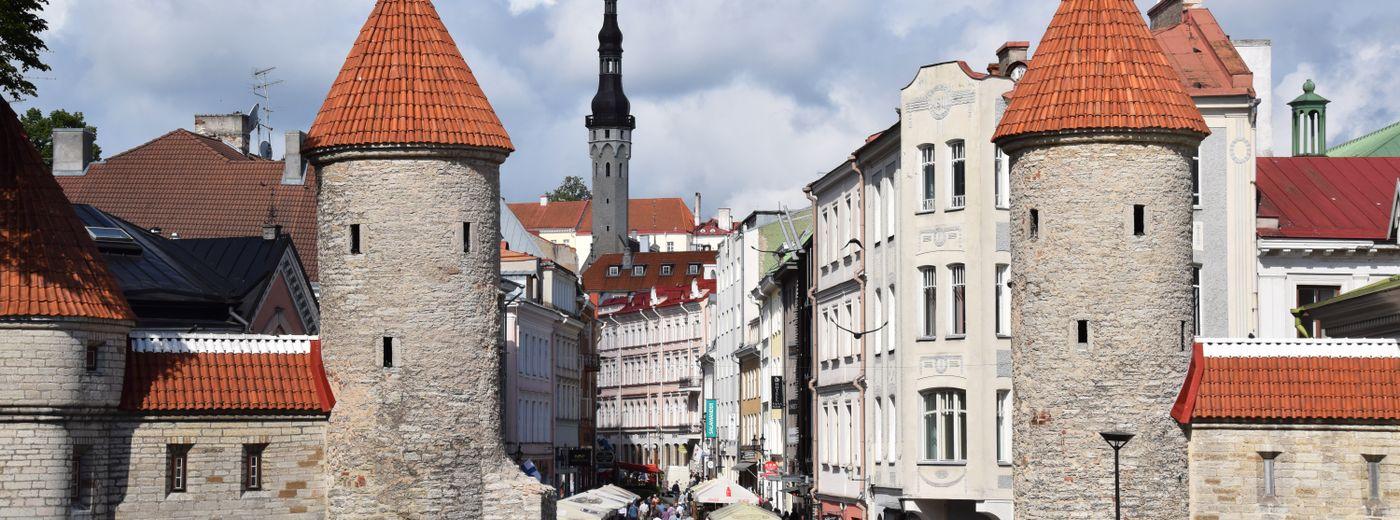 Tallinn Old Town Beer Tasting